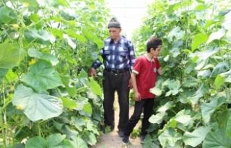 Ahıska Türkleri ana vatanlarında yeniden hayata tutunuyor
