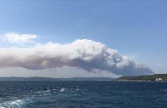 Gelibolu Yarımadası'nda korkutan orman yangını!