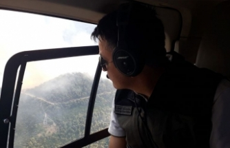 Bakan Pakdemirli duyurdu: Orman yangını ile ilgili 1 kişi gözaltına alındı
