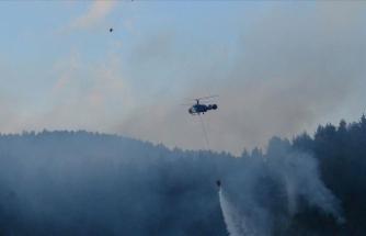 Çanakkale'de orman yangını! Müdahale ediliyor