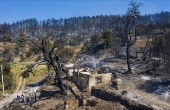 Manisa'daki orman yangını 3 gün sonra kontrol altına alındı