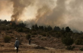 Bolu'da çıkan orman yangınına müdahale sürüyor