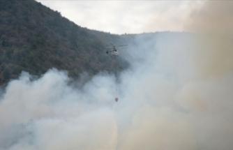 Eskişehir'deki orman yangını kontrol altında