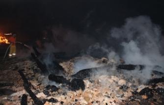 Kastamonu'daki yangında 6 yayla evi küle döndü