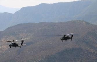 Yıldırım-11 Operasyonu kapsamında Siirt'te 4 terörist etkisiz hale getirildi