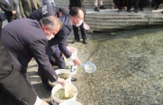 970 bin balık yavrusu Keban Barajı'na bırakıldı
