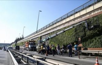 İstanbul Büyükşehir Belediyesi'nin söktüğü dikey bahçelere talip var!