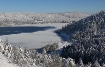 Bolu'daki iki turistik merkez kar yağışından memnun