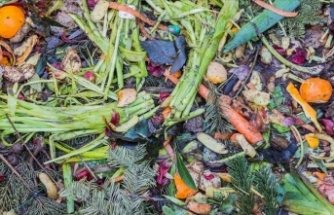 Gıda israfında çarpıcı sonuç: 870 milyon aç insanı doyurabiliriz