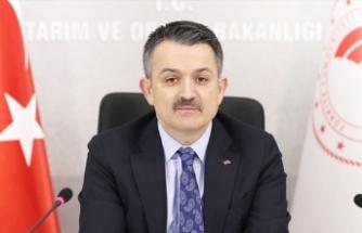 Pakdemirli duyurdu: 140 milyon liralık destek ödemeleri başladı