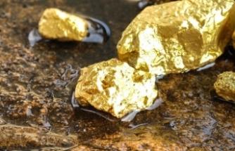 En yetkili isim müjdeyi verdi: O ilde altın rezervi bulundu