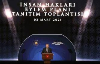'İnsan Hakları Eylem Planı yeni anayasayla taçlanmalı'