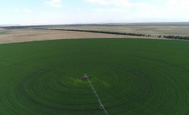 1 milyon kişiyi ilgilendiren arazilerin detayı belli oldu