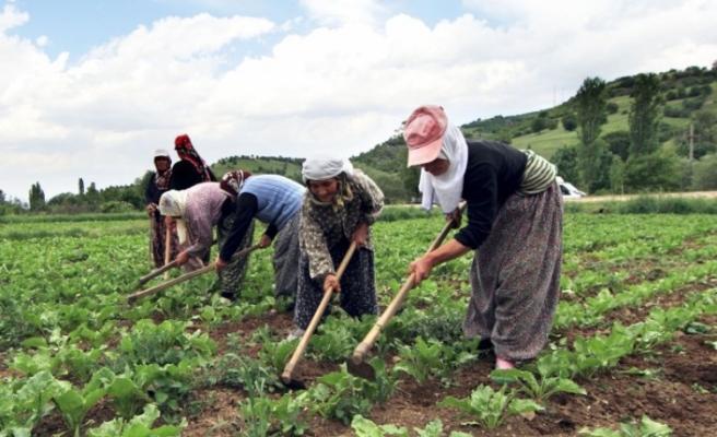 Prim desteği ve indirim çiftçinin yüzünü güldürdü