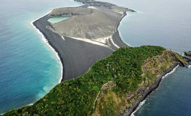 Dünyanın en yeni adasında yaşam belirtisi başladı