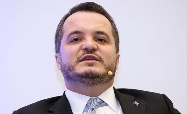 'Türkiye'nin doğrudan yatırım performansı önemli bir başarıdır'