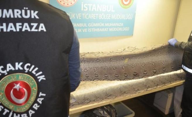 Abu Dabi'den Türkiye'ye gelen valizden çıktı!