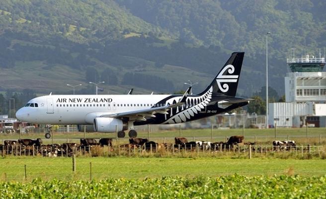 Son dakika! Yeni Zelanda'da alarm, uçuşlar durduruldu...