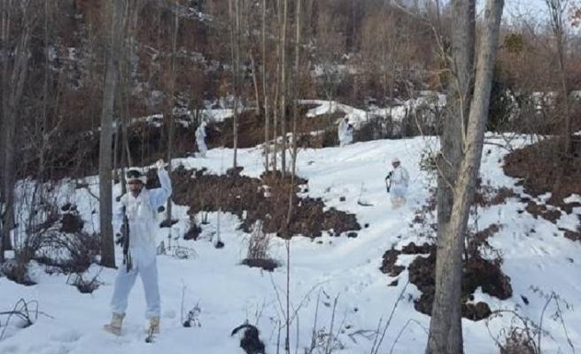 PKK'lı teröristlerin kış üslenmesine darbe