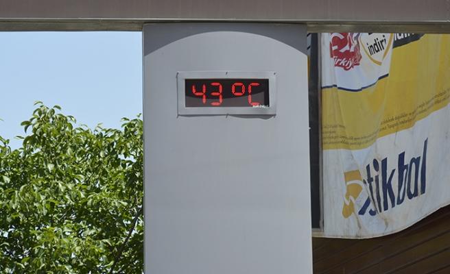 Şanlıurfa'da sıcaklıklar 42 dereceyi gösterdi