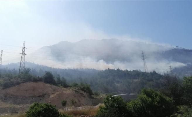 Bilecik'te çıkan orman yangınına müdahale ediliyor