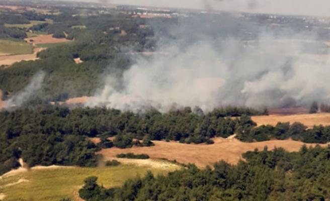 Adana'da tarlada yakılan anız, orman yangınına döndü