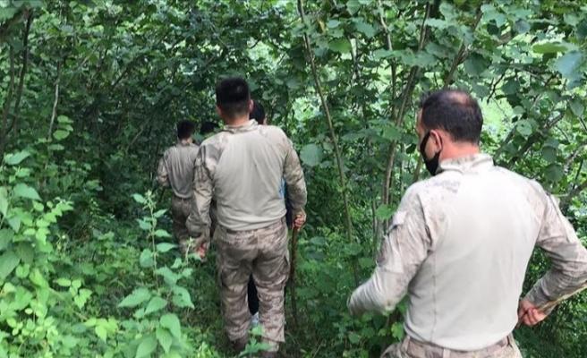 Giresun'da kaybolan İkranur'u arama çalışmalarında 4. gün