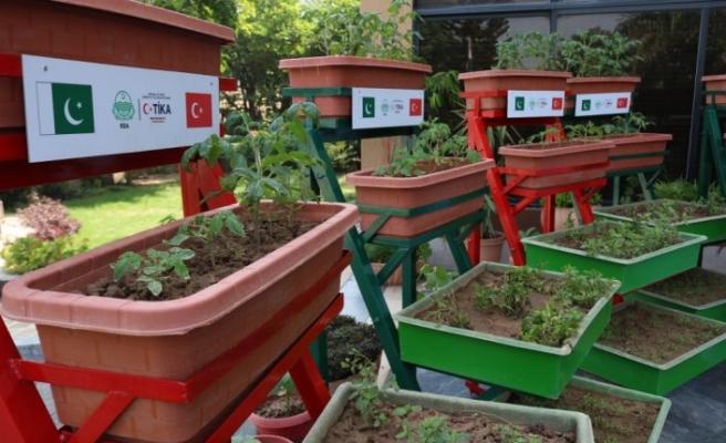 TİKA'dan Pakistan'da kadınlara Mikro Bahçecik projesi