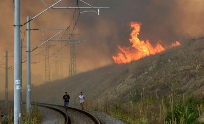 Bulgaristan'ın Türkiye sınırındaki yangın kontrol altına alınamıyor