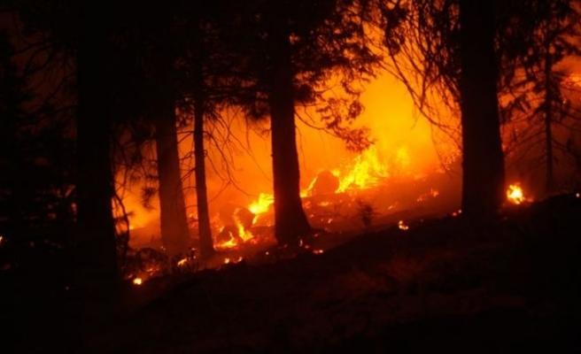 ABD'nin batı yakasındaki orman yangınlarında 34 kişi hayatını kaybetti