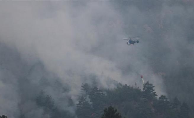 Muğla'daki orman yangınına havadan ve karadan müdahale