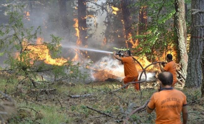 Çorum ile Sinop arasındaki orman yangını büyük ölçüde kontrol altına alındı