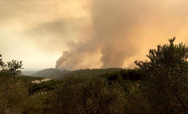 Suriye sınırındaki orman yangını 4 gündür sürüyor