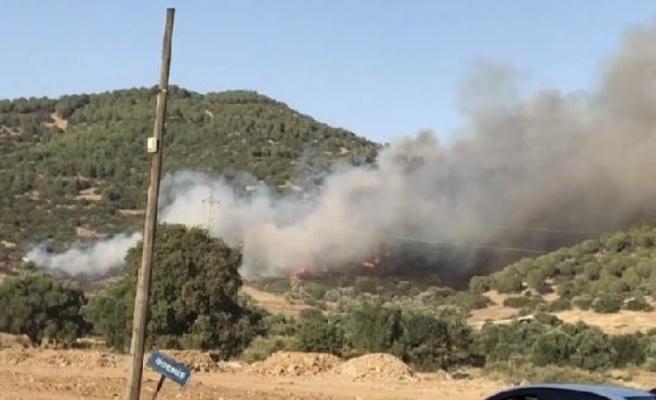 İzmir Ödemiş'te orman yangını