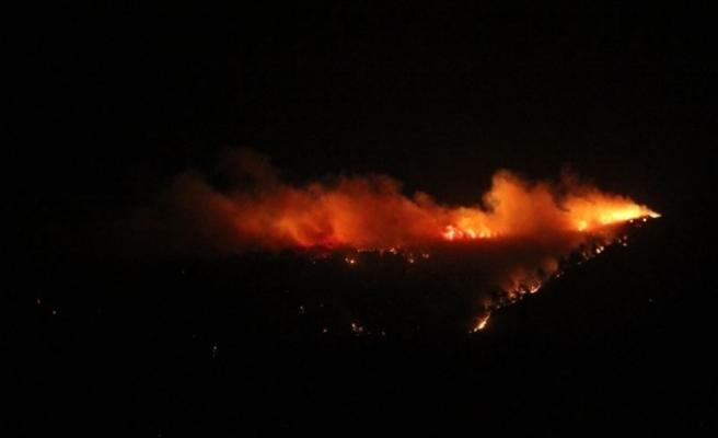 Hatay'ın İskenderun ilçesinde orman yangını çıktı