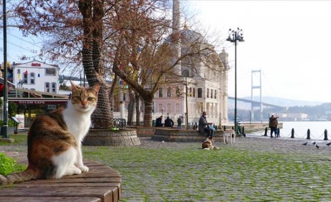 Marmara'da hava sıcaklığı mevsim normallerine dönüyor