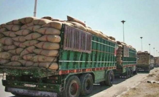 Terör örgütü PKK'nın buğday hattı