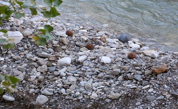 Bayburt'ta patlamamış top mermileri bulundu