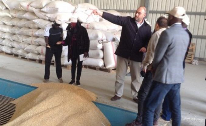 TİKA'dan Gambiyalı ve Senegalli tarım uzmanlarına eğitim