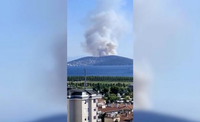 Heybeliada'da yangın çıktı