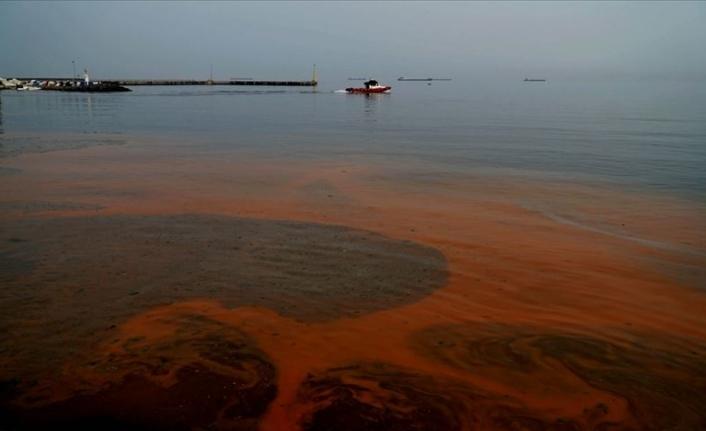 Marmara Denizi'nin rengi değişti